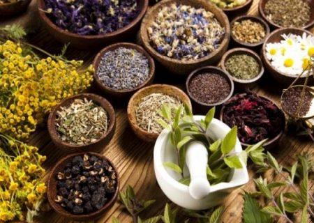 لزوم نهادینه کردن طب سنتی در جامعه/ از سلامت کده طب سنتی در مازندران چه خبر؟